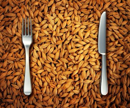 Eating Wheat