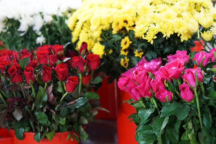 flowers ready for sale