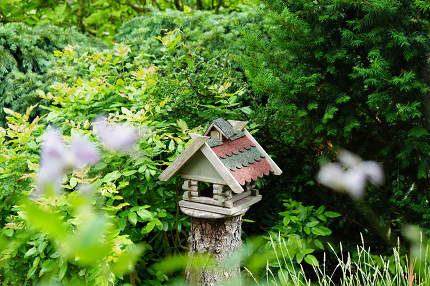 free download: an aviary in the garden on an old sawed tree trunk