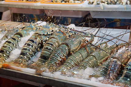 fresh lobsters at thailand food court