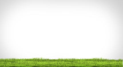 green grass meadow 3d rendering background