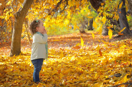 Little girl in autumn park
