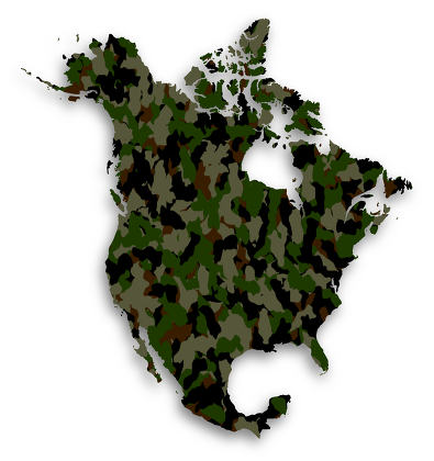 Map of North America filled with camouflage pattern