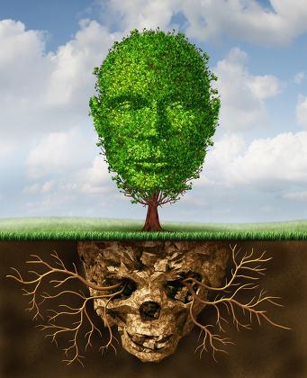 Rebirth And Renewal