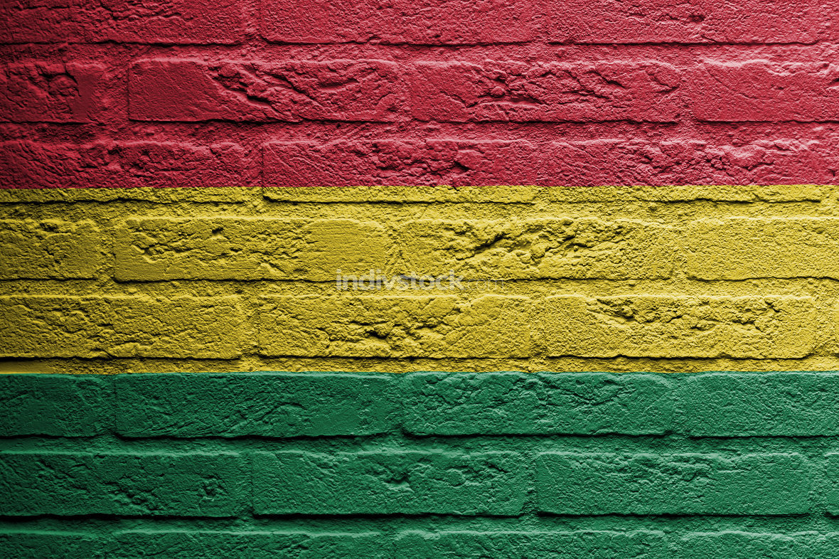 Brick wall with a painting of a flag, Bolivia