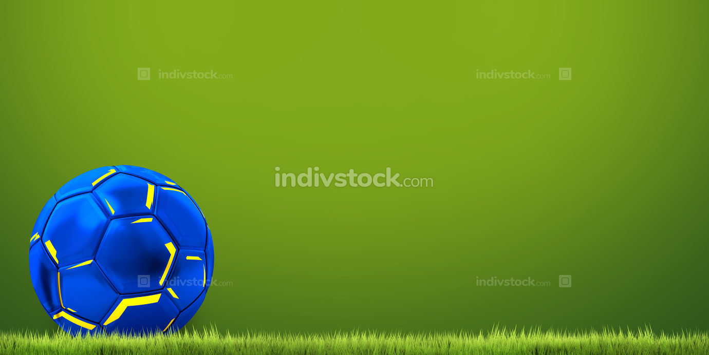 football ball european flag colored. 3d rendering