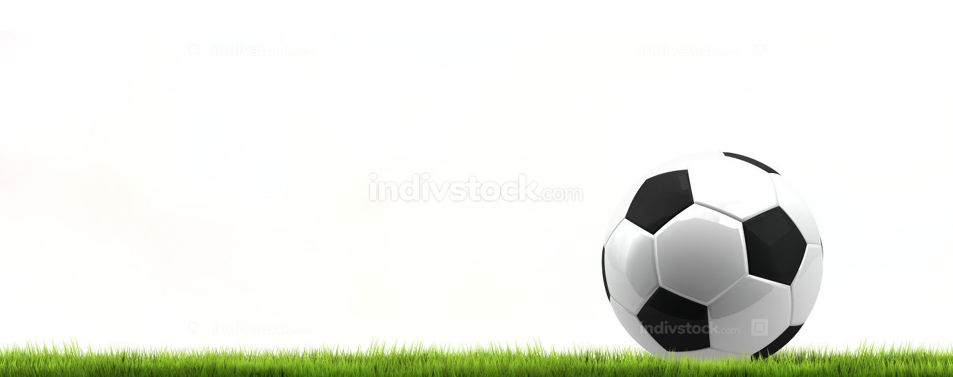 green grass isolated soccer football ball. 3d rendering