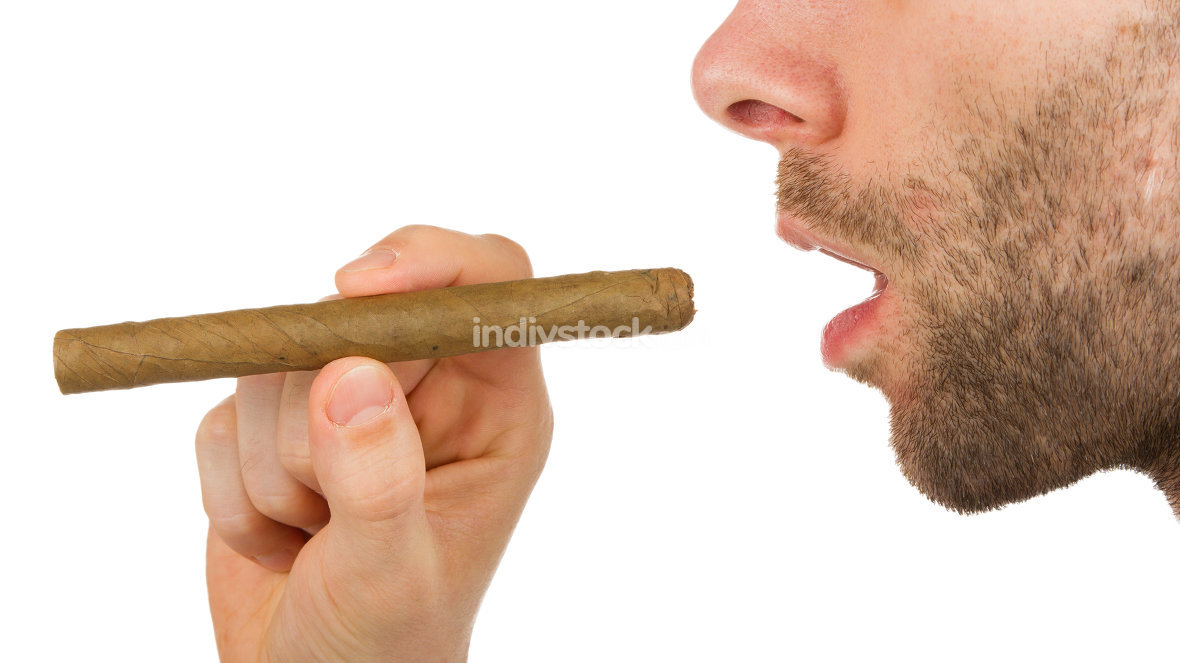 Man with beard is holding an unused cigar
