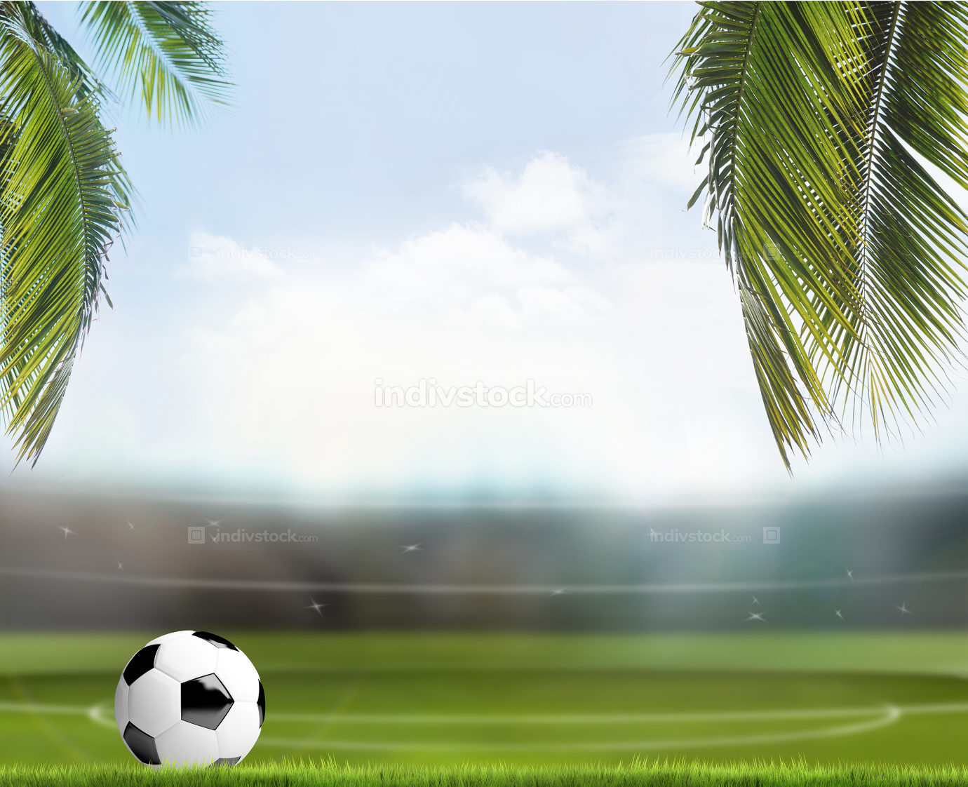 soccer football ball with tropical palm leaves over football sta