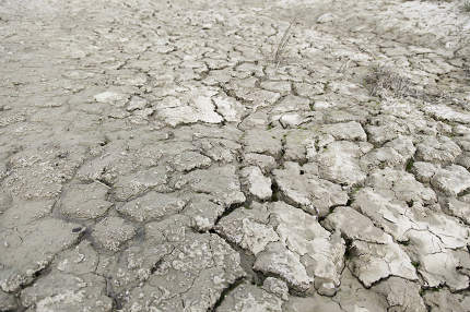 Dry soil by drought