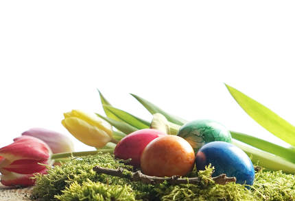 easter eggs at green moos with bunch of tulips