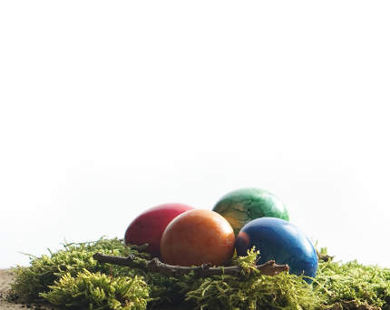 four easter eggs at green moos