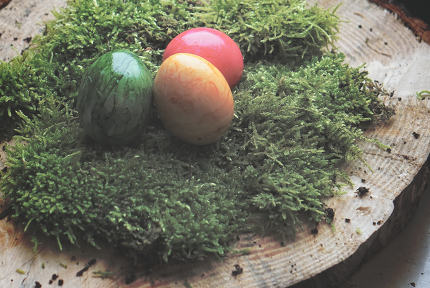 free download: colored real easter eggs on real green moss