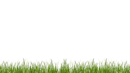 green grass blades of grass meadow lawn 3d-illustration