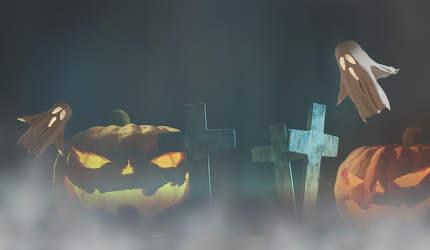 Halloween fog background 3d-illustration with halloween pumpkins