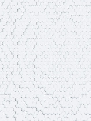 white hexagon background