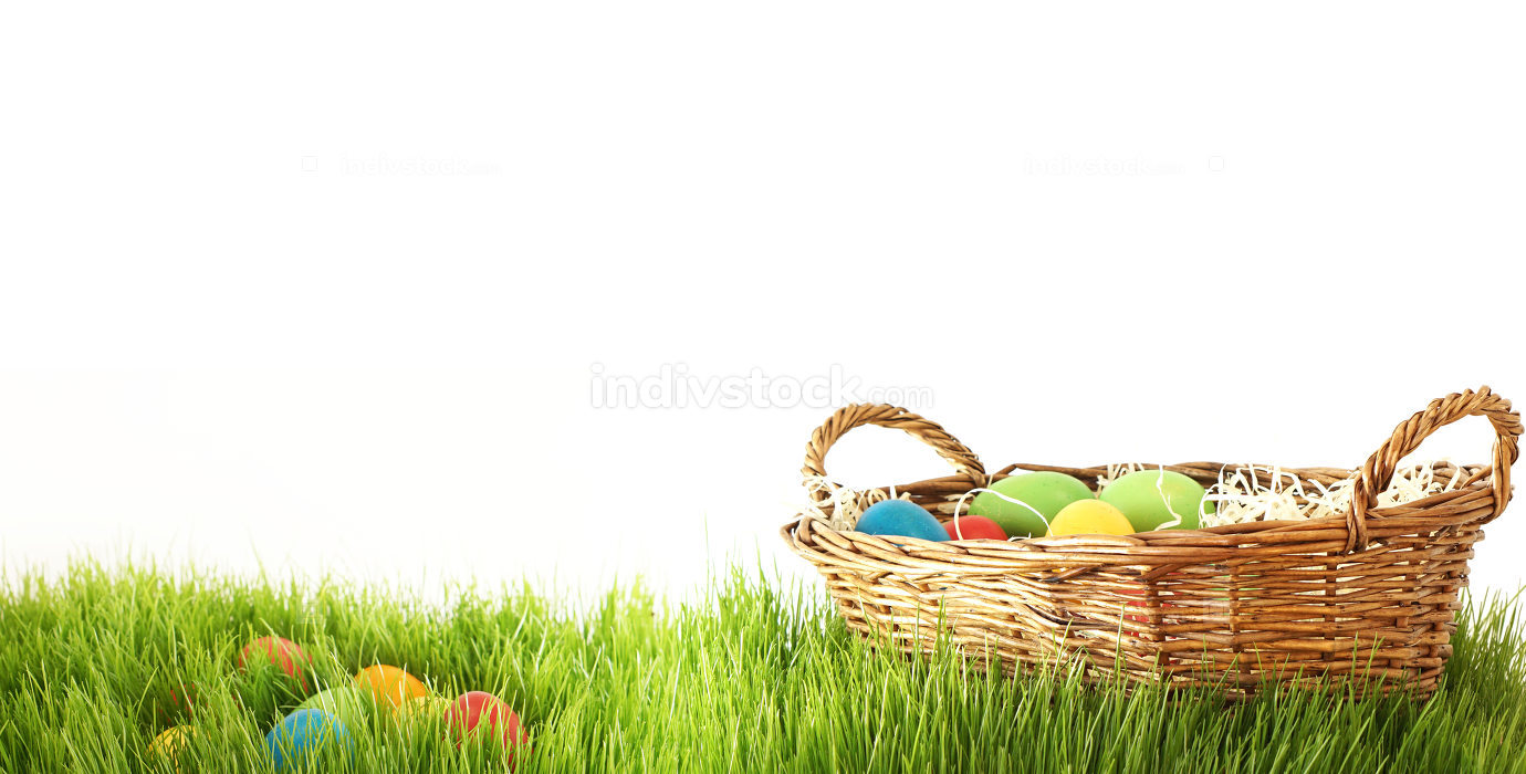 basket with easter eggs hidden behind green grass blades of gras