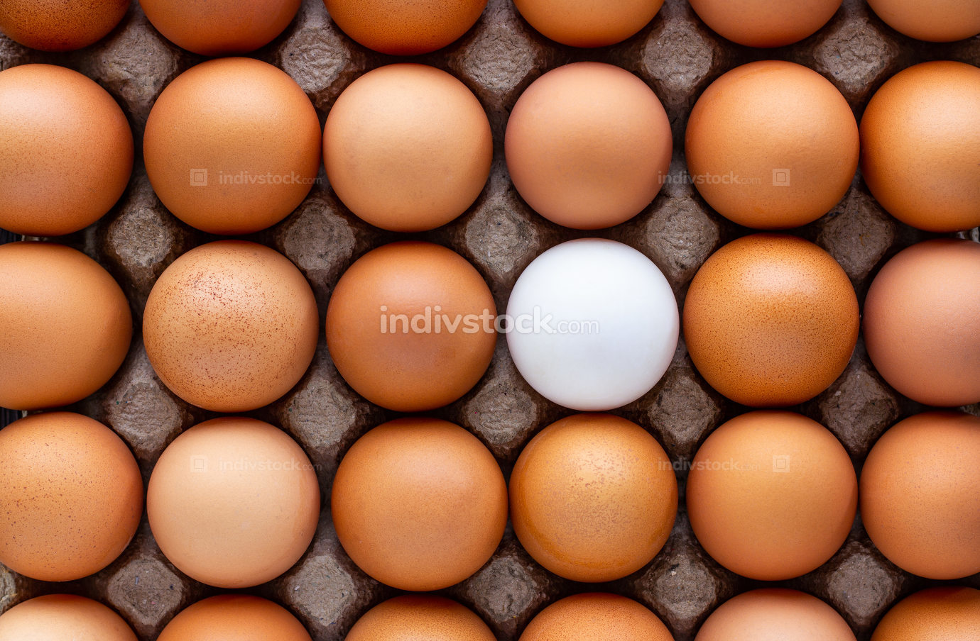 Chicken eggs and a duck egg in paper tray.