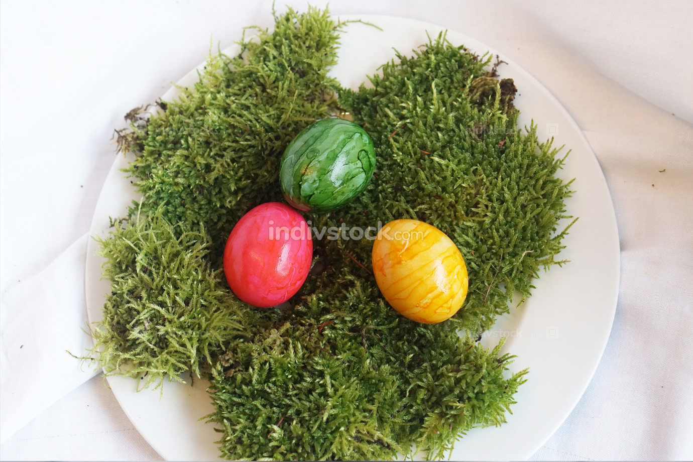 colored real easter eggs on real green moss on white plate