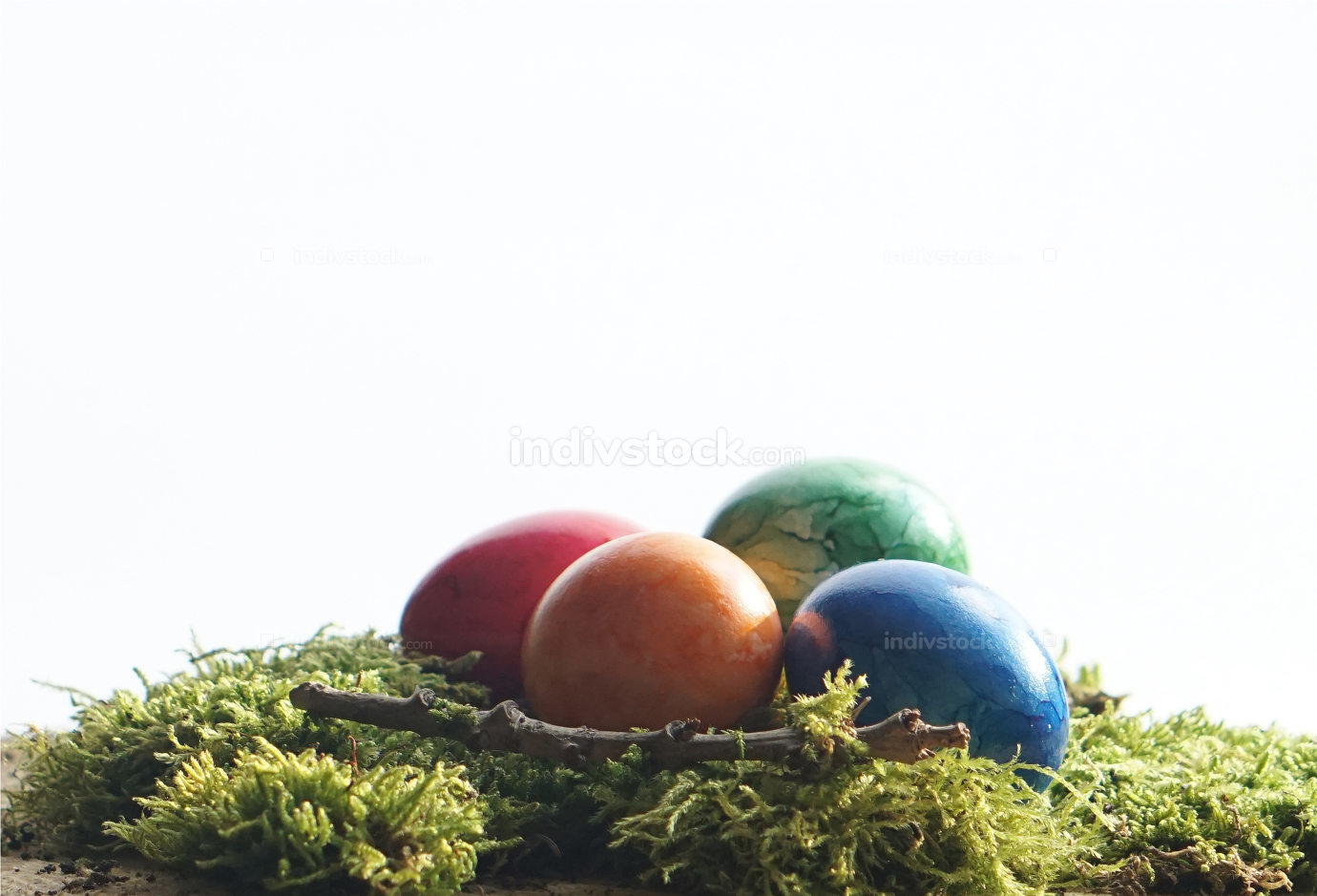 Easter green moos and colorful easter eggs