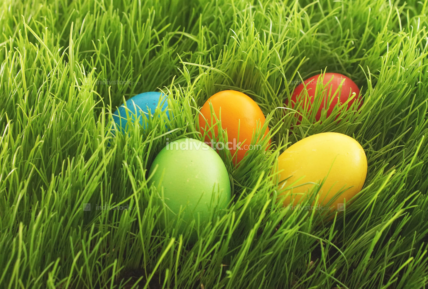 free download: easter eggs hidden in green grass