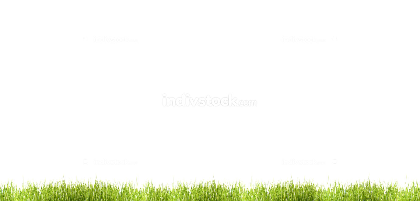 free download: green grass meadow blades of grass isolated lawn 3d illustration