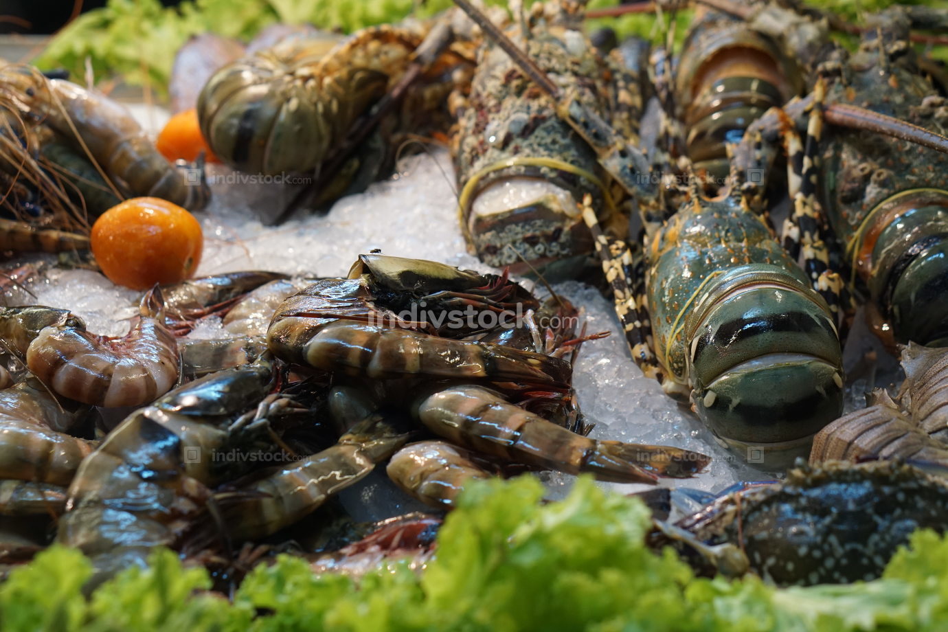 free download: lobster on ice at thai market in front of a restaurant