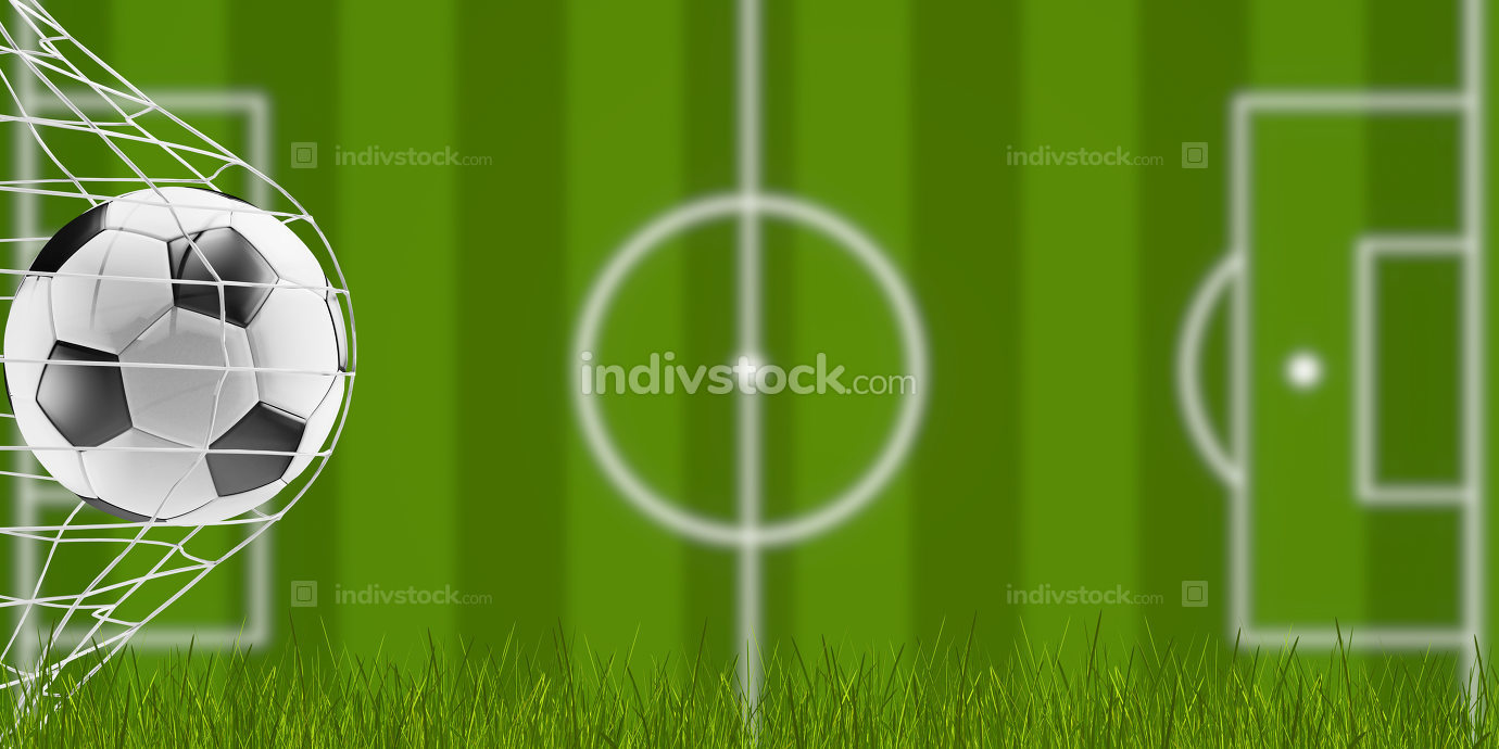 free download: soccer ball and blades of grass with blurred soccer field 3d-ill