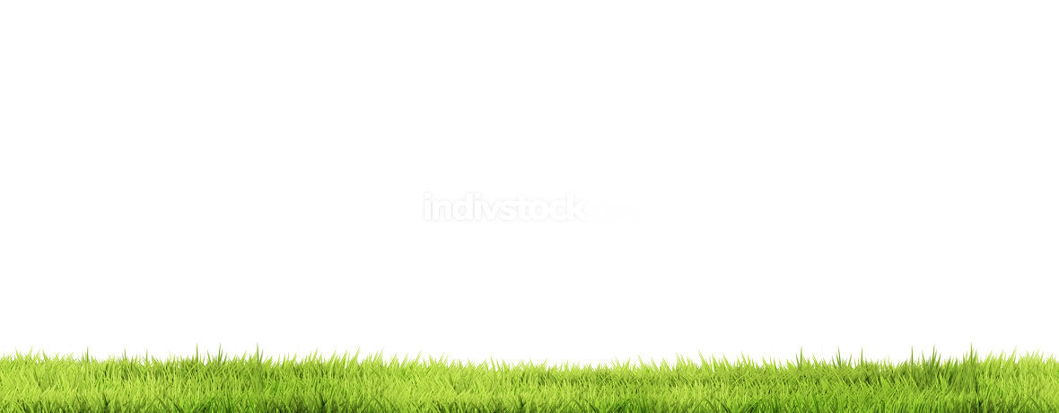 green grass blades of grass green lawn meadow 3d rendering