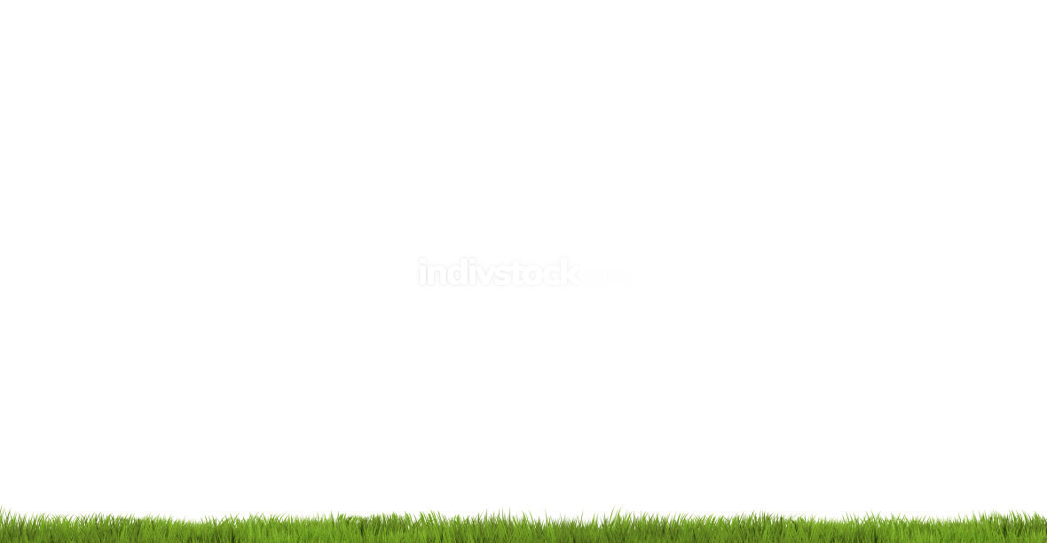 green grass meadow 3d render white background