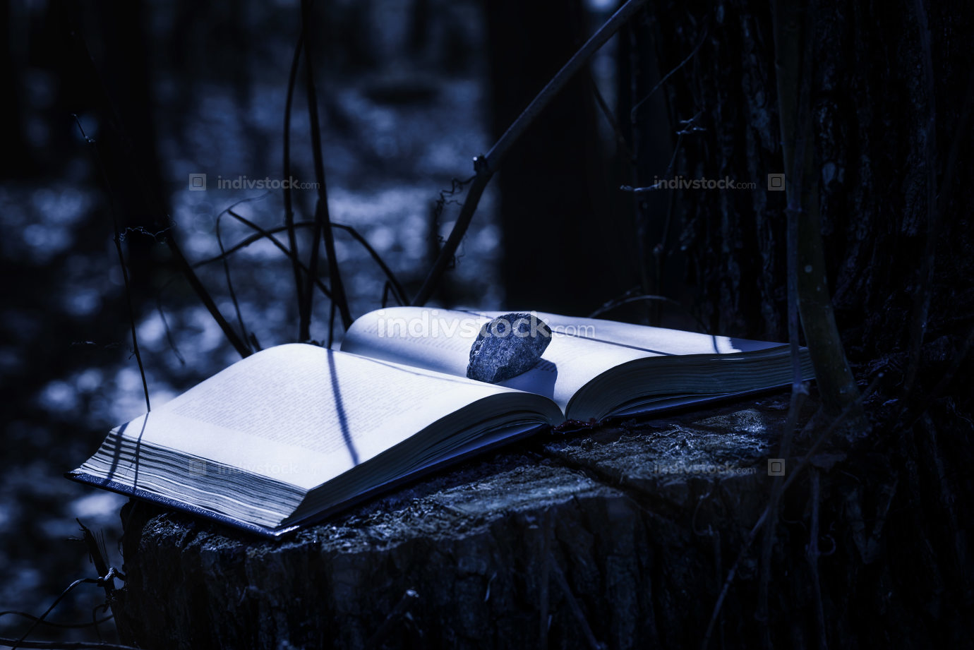 Mysterious Book at Night