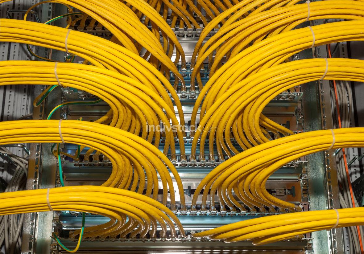 network business data
