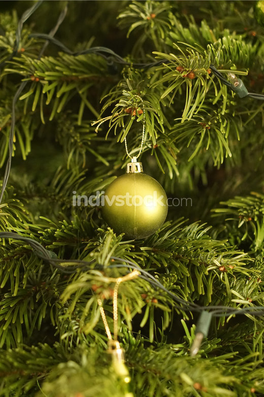 real christmas tree fir with green christmas ornament