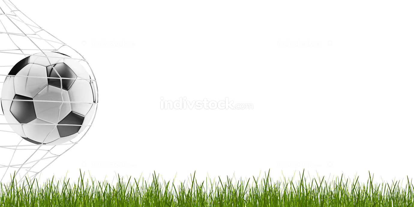 soccer ball and blades of grass 3d-illustration
