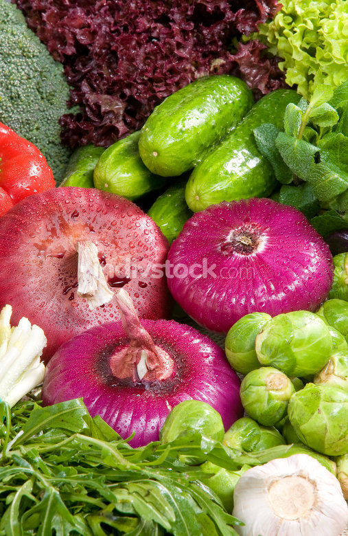 Vegetable in composition - Close-up