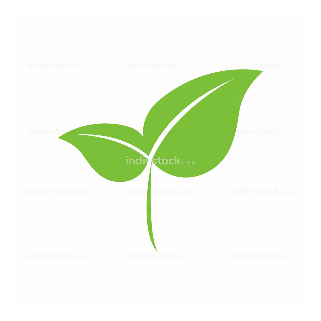 Eco-Friendly Green Leaf