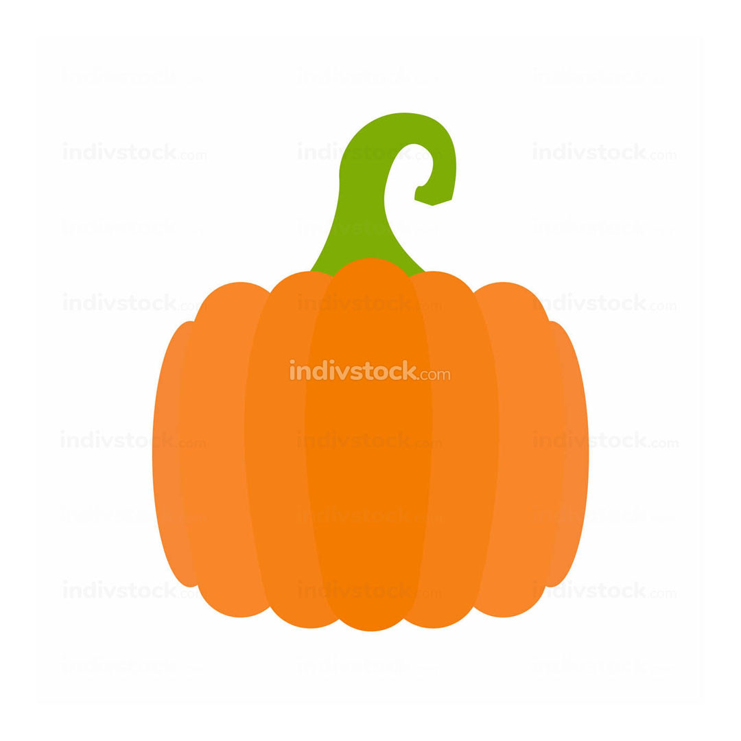 simple Pumpkin Illustration