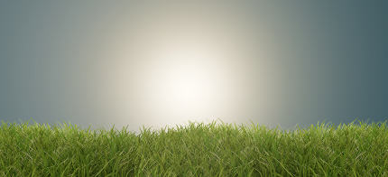 free download: green grass success vibrant bright light abstract creative backg