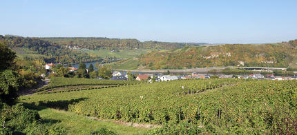 Moselle valley, Machtum, Luxembourg