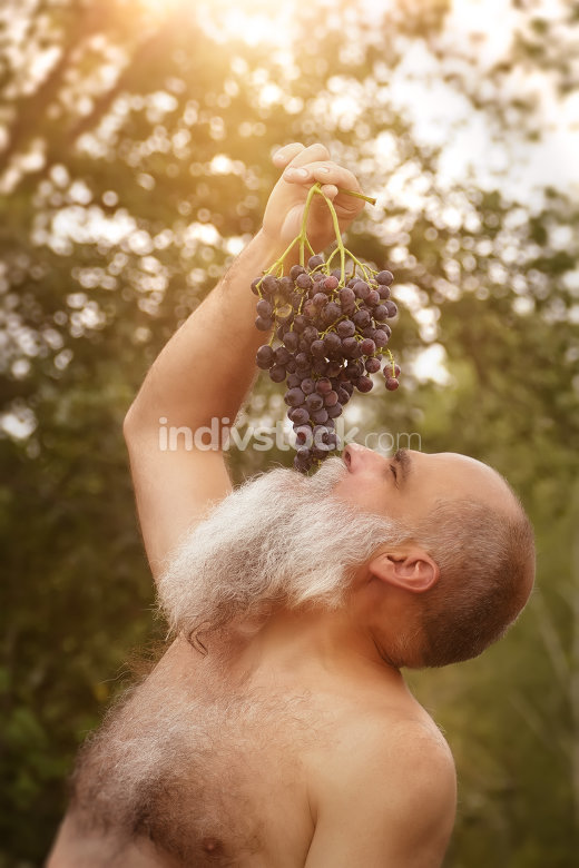 Bacchus eating grapes outdoors