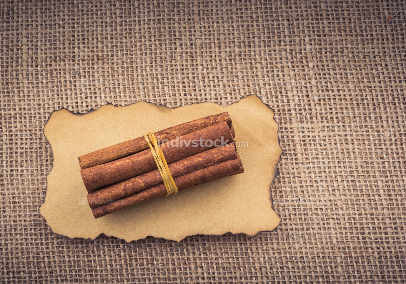 bundle of Cinnamon sticks on canvas