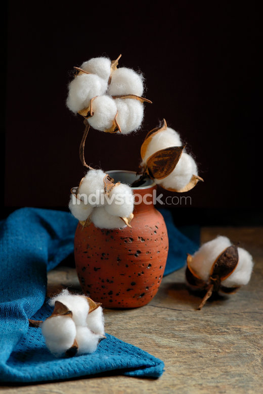 Cotton branches and vase