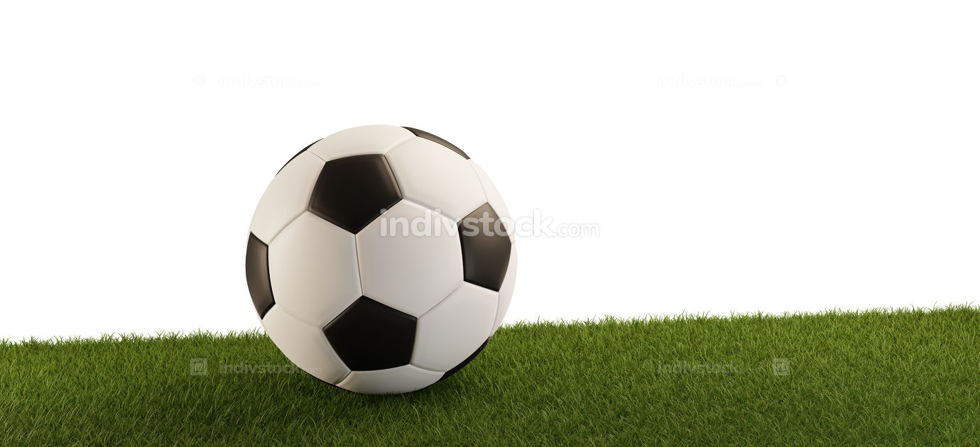 Soccer ball on grass panorama isolated white background 3d-illus