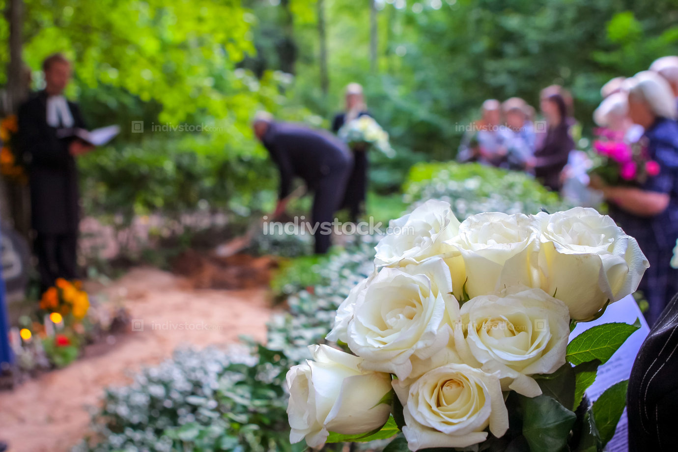 White roses at funeral near the grave.