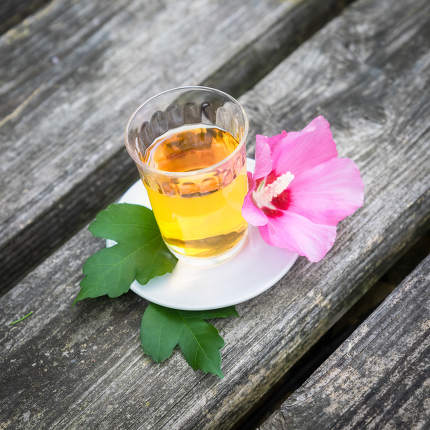 Mallow tea with blossom on old wooden background