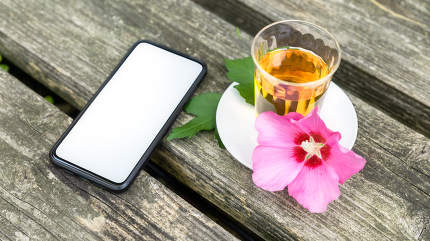Mallow tea with smartphone on old wooden background