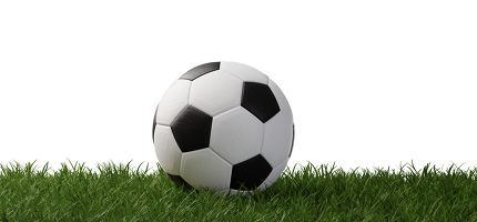 soccer ball on grass 3d-illustration isolated on white