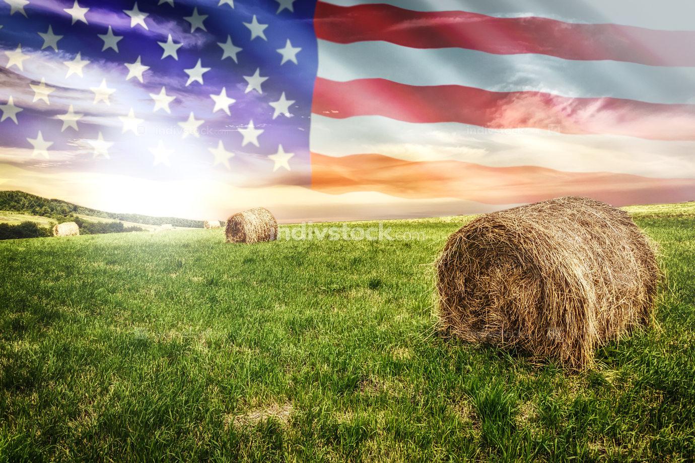 American farm field