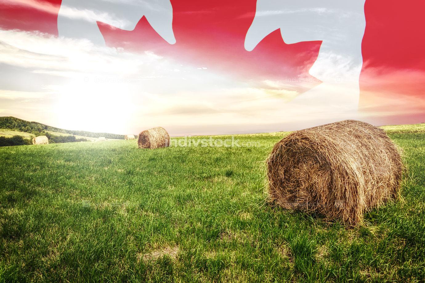 Canadian farm field