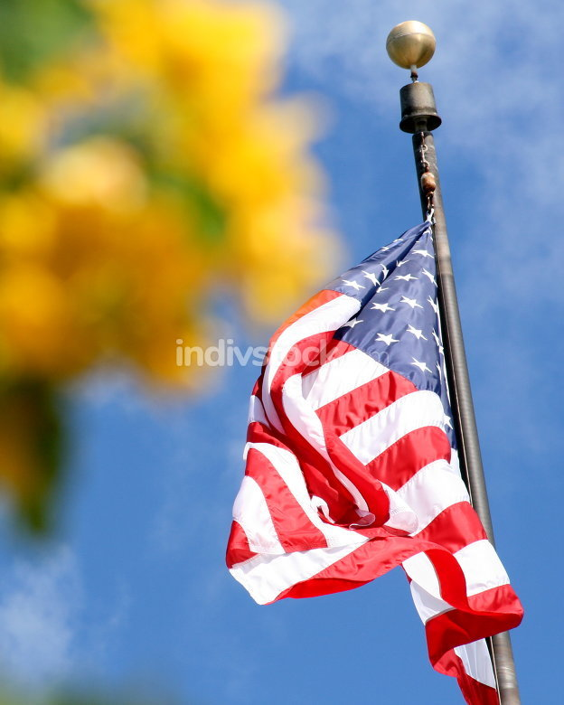 free download: flag of america